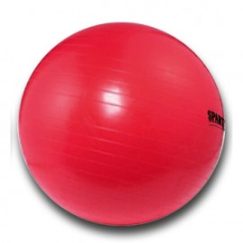 Gymnastický míč 95 cm SPARTAN